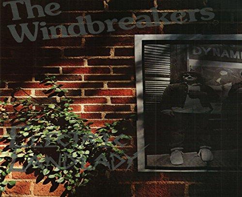 The Windbreakers: Electric Landlady