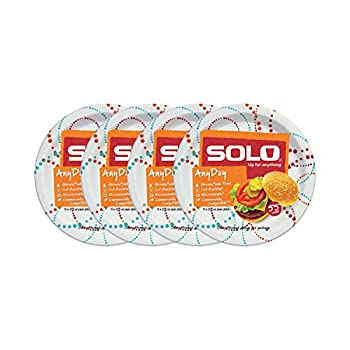 SOLO Cup Company Cup Any Day Paper Plates 10 Inch 220 Count