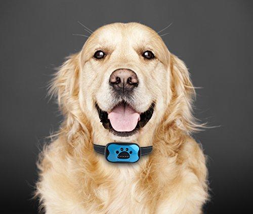 ISOTRONIC 2in1 Anti-Bell Hundehalsband   Gerät zum Stoppen von übermäßigem Hundebellen OHNE Schock Spray! SICHER HARMLOS Anti-Gebell Training mit Ton Vibration für kleine mittlere große Rassen