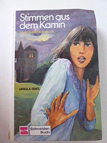 Stimmen aus dem Kamin. Ein Romantik- Thriller