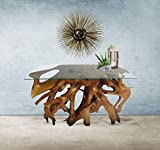 Genuine Teak Wood Root Console Table with Glass Top, 48 inch Made by Chic Teak