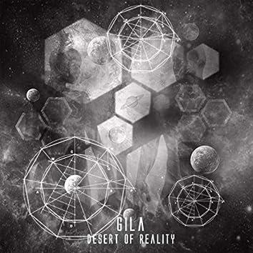 Desert of Reality