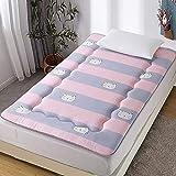 Colchones Futon colchón piso japonés, suave dormir tatami alfombra de tatami, roll up colchón almohadilla de dormir plegable piso de un solo piso cama para niños niñas dormitorio colchón Textiles del