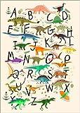 Poster 30 x 40 cm: Dino-Alphabet von Kidz