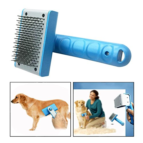 Itian Spazzola per Cani - Professionale Dog Grooming Pettine per Promuove la Pelle più Sano