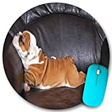 KGSPK Gaming Mouse Pad,Puppy Resting on a Sofa Funny Animal Photography Cute Canine,7.9'x7.9' inch Non Slip Rubber Round Mouse mat Desk Decor for Office Home Computer PC latop