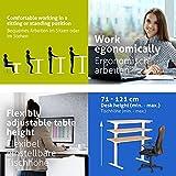 eSmart Germany elektrisch höhenverstellbarer Schreibtisch | Mit Holz-Tischplatte aus Ahorn Dekor und Tischgestell | 120 x 60 cm - 4