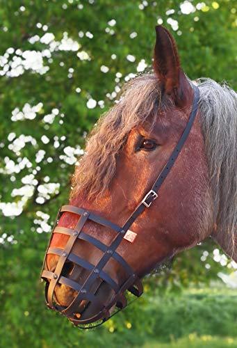 Heavy Horse Parts Fressbremse Strong Schwere Warmblüter und Kaltblüter ohne Kehlriemen und...