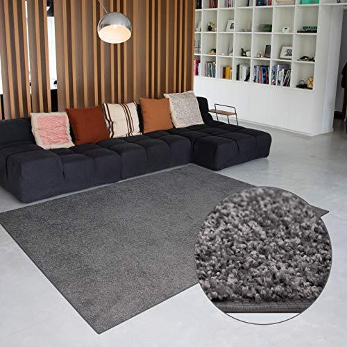 Carpet Studio Flauschiger abgepasster Teppich 115x170cm, Wohnzimmer/Schlafzimmer/Küche/Flur, praktische Reinigung, per Hand fertiggestellt, Platina