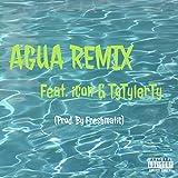 Agua (feat. Icon & TyTylerTy) (Remix) [Explicit]