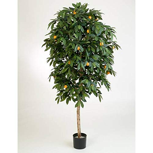 PARC Network - Orangenbaum Künstlich, Echtstamm, mit Früchten, 170cm - Künstlicher Orangenbaum - Kunstbaum - Deko Baum - Kunstpflanze