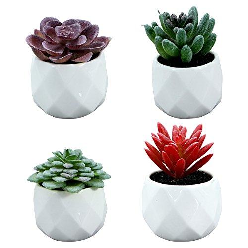 WINOMO 4pcs Künstliche Sukkulenten Pflanzen Mini Kaktus Tischdeko kunstpflanzen im Topf