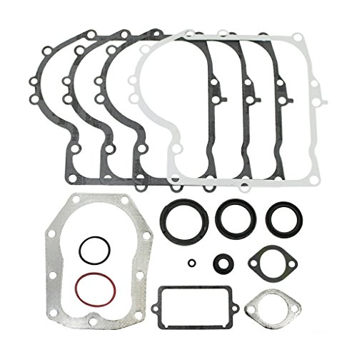 Briggs and Stratton Genuine 494241 Motordichtungs-Set