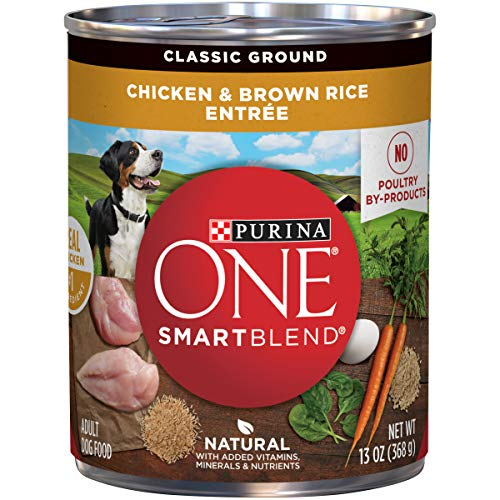 Purina ONE Natural Pate Wet Dog Food, SmartBlend Chicken & Brown Rice Entree - (12) 13 oz. Cans