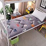 Japonés Thicken Futon Tatami Cojín Colchón Antideslizante Colchón de futón Suave Tapetes Plegables Dormitorio de Estudiantes Litera Casa para Dormir Cama Almohadillas de algodón (Color: D, Tamañ