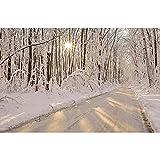 Accesorios de Fondo de fotografía Fondo de fotografía de Paisaje de Invierno Accesorios de Fondo de Estudio fotográfico de Vinilo A31 10x7ft / 3x2,2 m