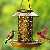 QIUFO Comedero para pájaros silvestres solares, comedero para pájaros colgante para casetas solares exteriores con gancho como idea de regalo para los amantes de los pájaros (13 piezas de metal)
