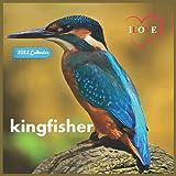 Ilove kingfisher Calendar 2022: Official kingfisher 2022 Calendar (12 Months) Birds Calendar 2022 ,Square 2022 Calendar