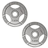 POWRX Dischi Pesi Olimpici 20 kg Set (2 x 10 kg) - Ideali per manubri e bilancieri olimpionici con Braccio da 50 mm (Argento)