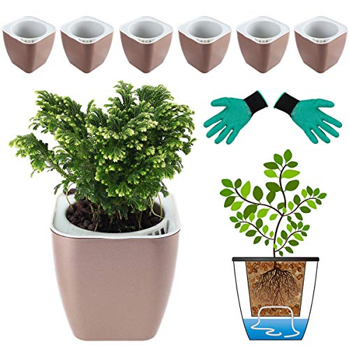 DeEFL 6 Packs 5 Inches Self Watering Planters Plastic Self Watering Pots Wicking Flower Pots for Indoor Plants, African Violet, Ocean Spider Plant, Orchid, Champaign Gold