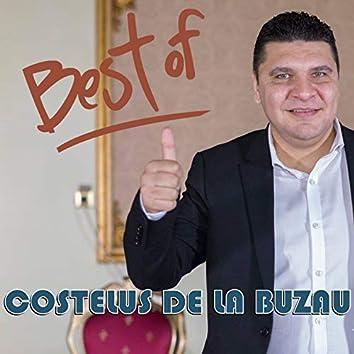 Best Of Costelus De La Buzau