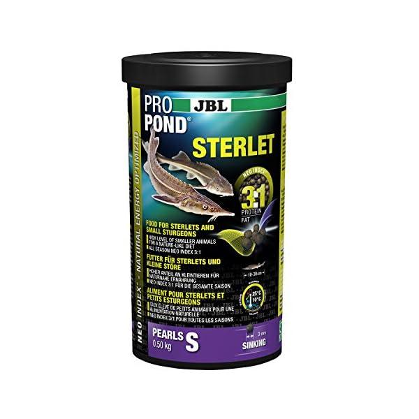 JBL Futter für Sterlets und kleine Störe, Sinkende Futterperlen, Spezialfutter, ProPondSterlet