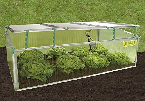 Exaco BioStar 1500 Premium Cold Frame Gardening Tool, Pack of 1, Clear