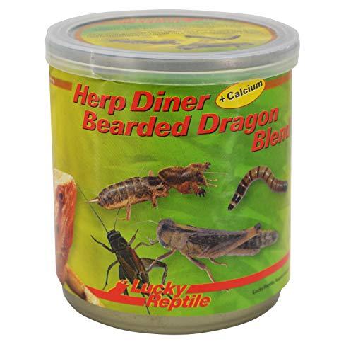 Lucky Reptile Herp Diner - Bearded Dragon Blend 70 g, speziellen Futter für Bartagamen und andere Reptilien