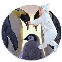 エリアラグ軽量 ペンギン科 フロアマットソフトカーペット直径39.4インチホームリビングダイニングルームベッドルーム