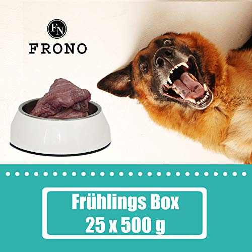 Barf-Paket > Frühlingsmix < 12,5 kg (25 x 500 g) leckeres Barffutter für Hunde in Premium Qualität