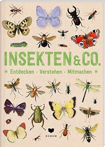 INSEKTEN & Co.: Entdecken - Verstehen - Mitmachen