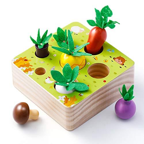Babyhelen Juguetes Montessori 1 Años,Juguetes de Madera Niños Juego de Clasificación Rompecabezas Juguetes Educativos Regalo Bebe de Cumpleaños