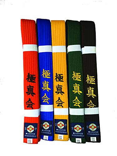 Kyokushin Karate Gürtel (orange, 260)