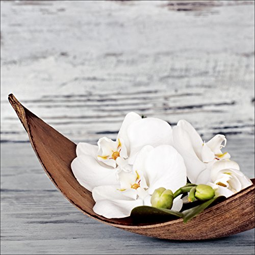 Pro-Art-Bilderpalette White Orchid I Glas-Art, bunt, 20 x 20 x 1,3 cm