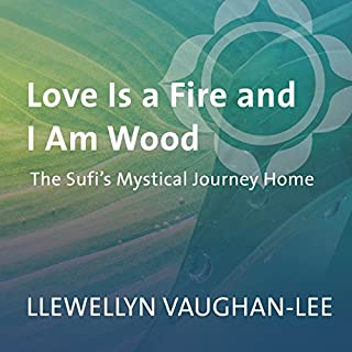 Love Is a Fire and I Am Wood cover art