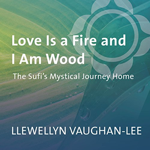 Love Is a Fire and I Am Wood audiobook cover art