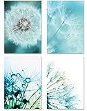 PICSonPAPER Poster 4er-Set PUSTEBLUMEN, ungerahmt DIN A4,