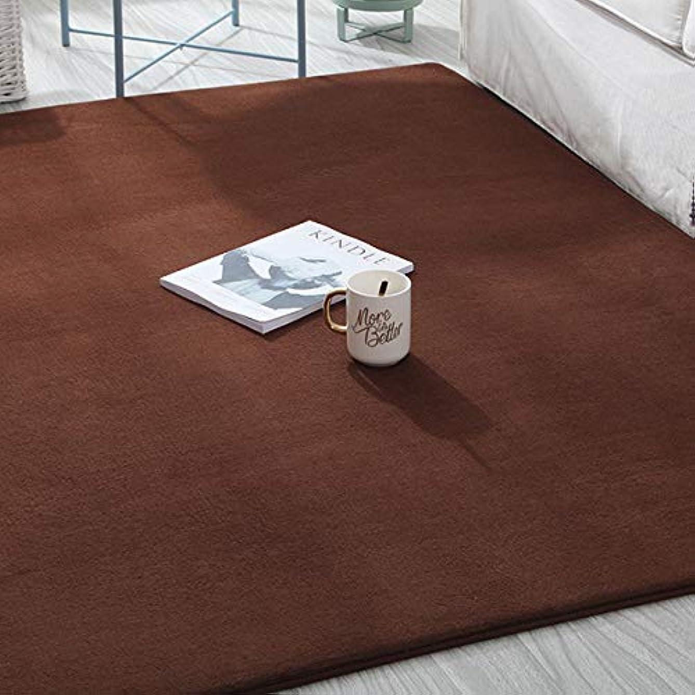 不安定デコレーションセグメント[QIHANG]ラグ 洗えるカーペット ラグマット 無地 180×200cm 軽量 オールシーズン 長方形 正方形 リビング 絨毯カーペット 滑り止め 抗菌 防ダニ 厚手 床暖房?ホットカーペット対応 ブラウン