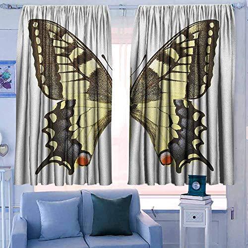 Venster verduisteringsgordijnen voor kamer donkere panelen voor woonkamer slaapkamer slibstaart vlinder transformatie van limoen vlinder natuurlijke levenscyclus thema geel groen zwart