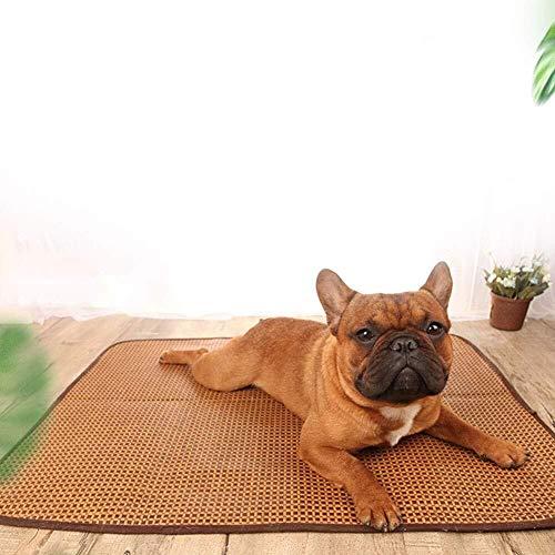 LCSD Cama para perro de verano para perro de peluche, pequeño perro y gato, suministros de pelo dorado, suministros para mascotas, tamaño mediano S-XL (tamaño M: M)