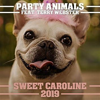 Sweet Caroline 2019