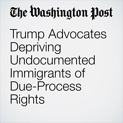 Trump Advocates Depriving Undocumented Immigrants of Due-Process Rights copertina