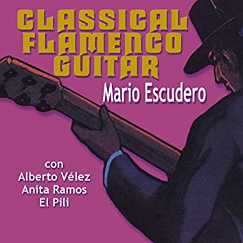 Classical Flamenco Guitar