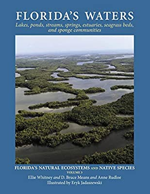 Florida's Waters (Florida's Natural Ecosystems and Native Species)