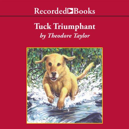 Tuck Triumphant audiobook cover art