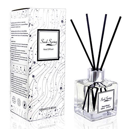 Orientalisches Blumen Reed Diffuser Set mit Stöcken, Seed Spring Jasmin Violett und Patchouli Duft Reed Diffusor Geschenkset mit natürlichem Duft für Badezimmer, lang anhaltender Duft 100 ml