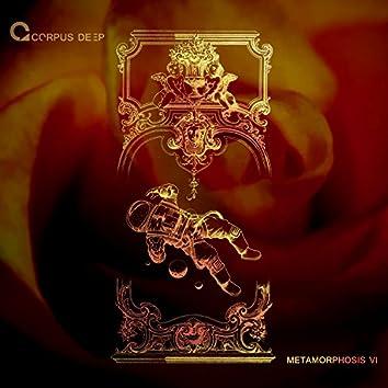 Metamorphosis 6
