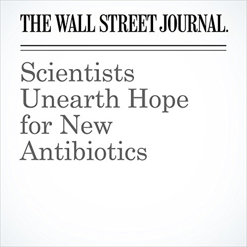 Scientists Unearth Hope for New Antibiotics copertina