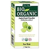 Polvere amla certificata bio naturale pura naturale con il libro di ricetta libera 100g (Amla Fruit Powder)