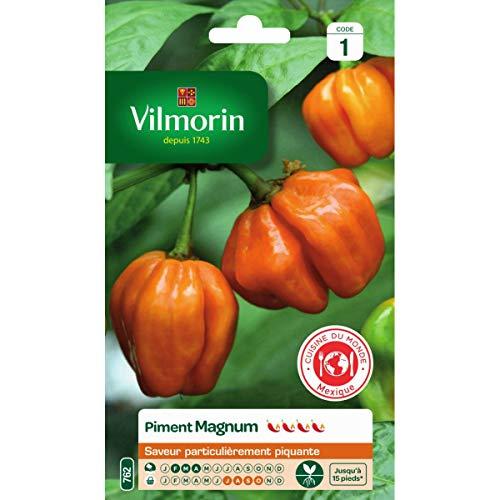 Vilmorin - Sachet graines Piment Magnum orange